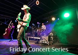 Winton Friday Concert Series