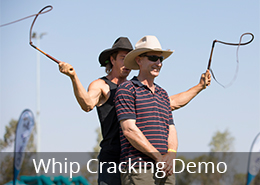 Whip Cracking Demonstration