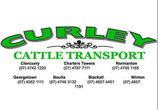 Curley Cattle Transport logo